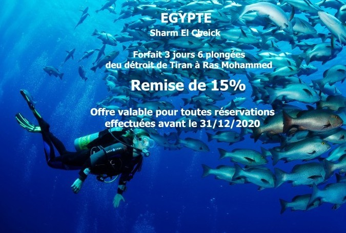 """Special offer """"3 days with 6 dives pack"""" Red Sea Diving College center"""