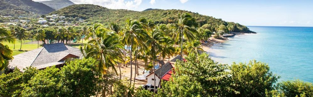 Discover the best dive centers in Basse-Terre