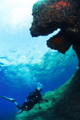 Discover the best dive centers in Sardinia