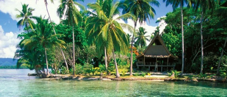 Discover the best dive centers in the Salomon islands