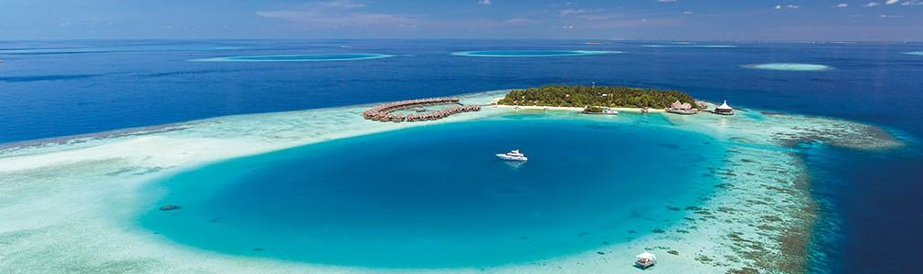 Discover the best dive centers in Maldives