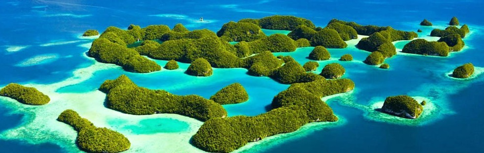 Discover the best dive centers in Palau / Micronesia