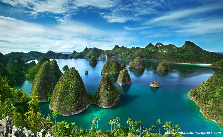 Discover the best dive centers in Raja Ampat