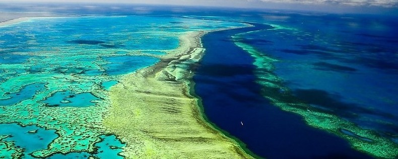 Discover the best dive centers in Great Barrier Reef - Australia