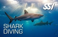 SSI Shark Diving Specialty Course