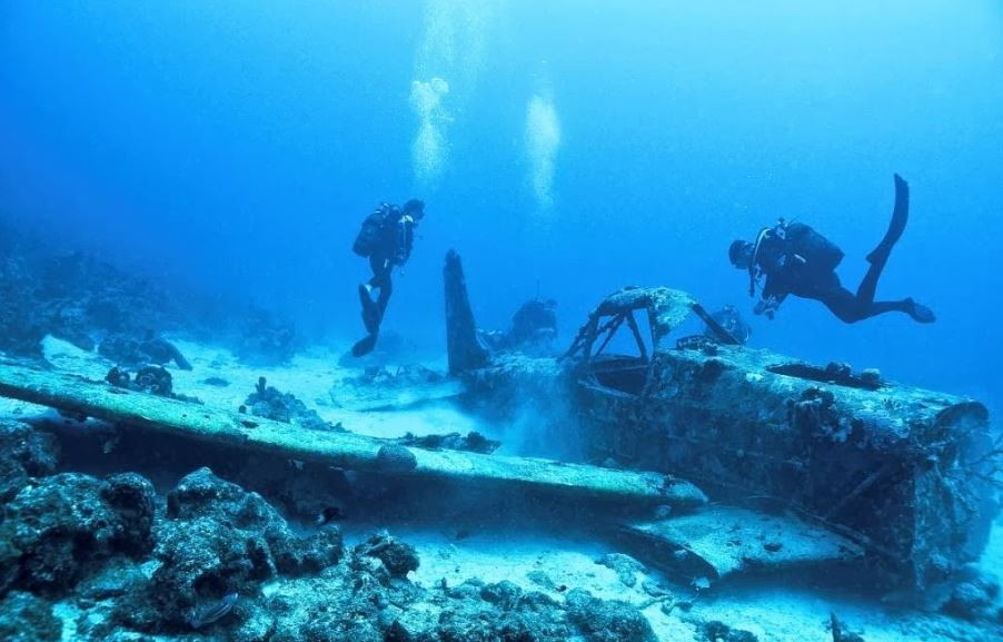 Diving In Guadeloupe The Best Dive Centers And Dive Sites