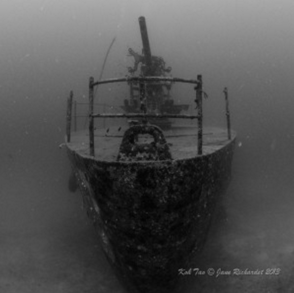Diving in thailand the best dive centers and dive sites - Koh tao dive center ...