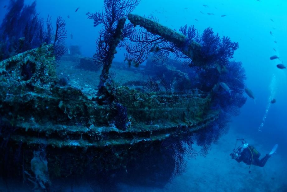 Wreck of the Omega - Tavolara